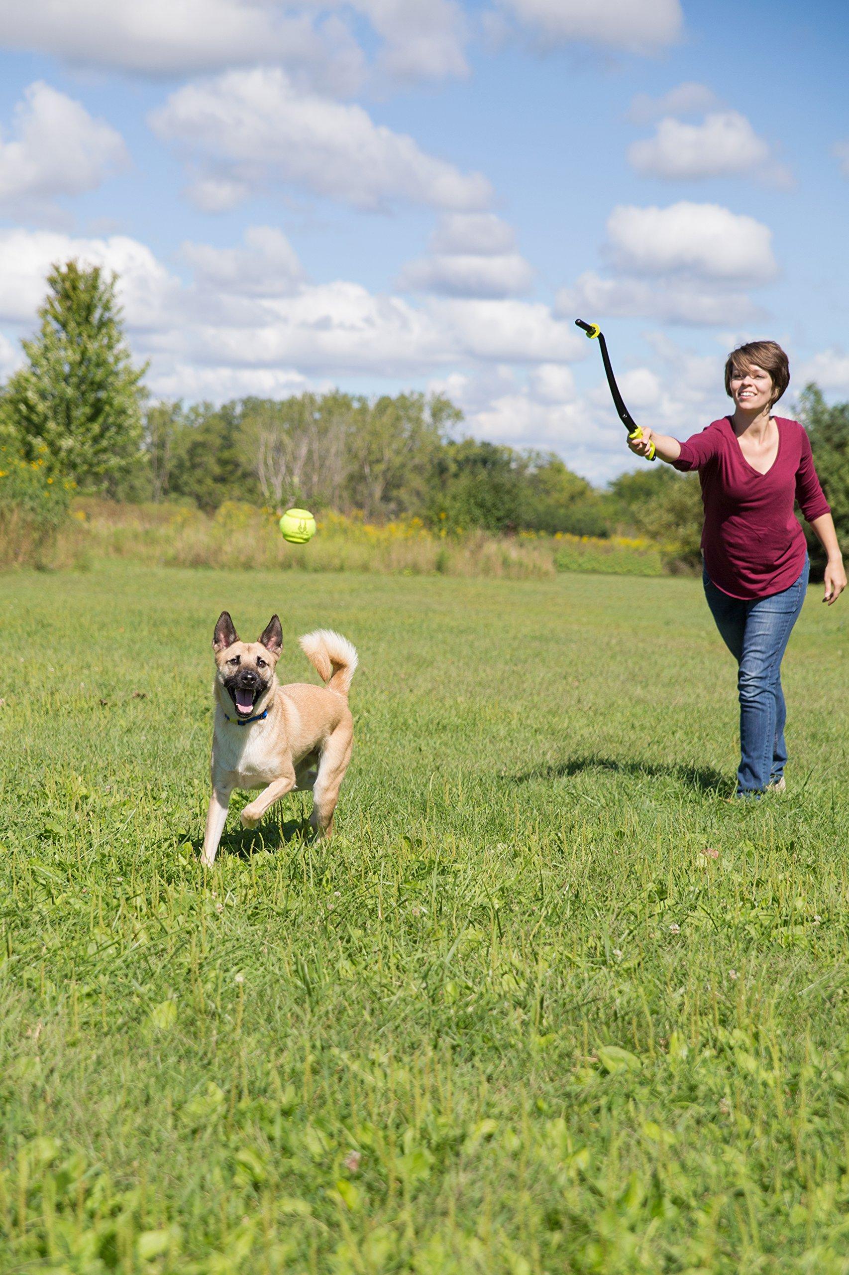 Hyper Pet Fling Pro Replacement Ball, Green