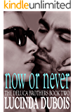 Now Or Never (Erotic Romance) Book 2 (The DeLuca Brothers)