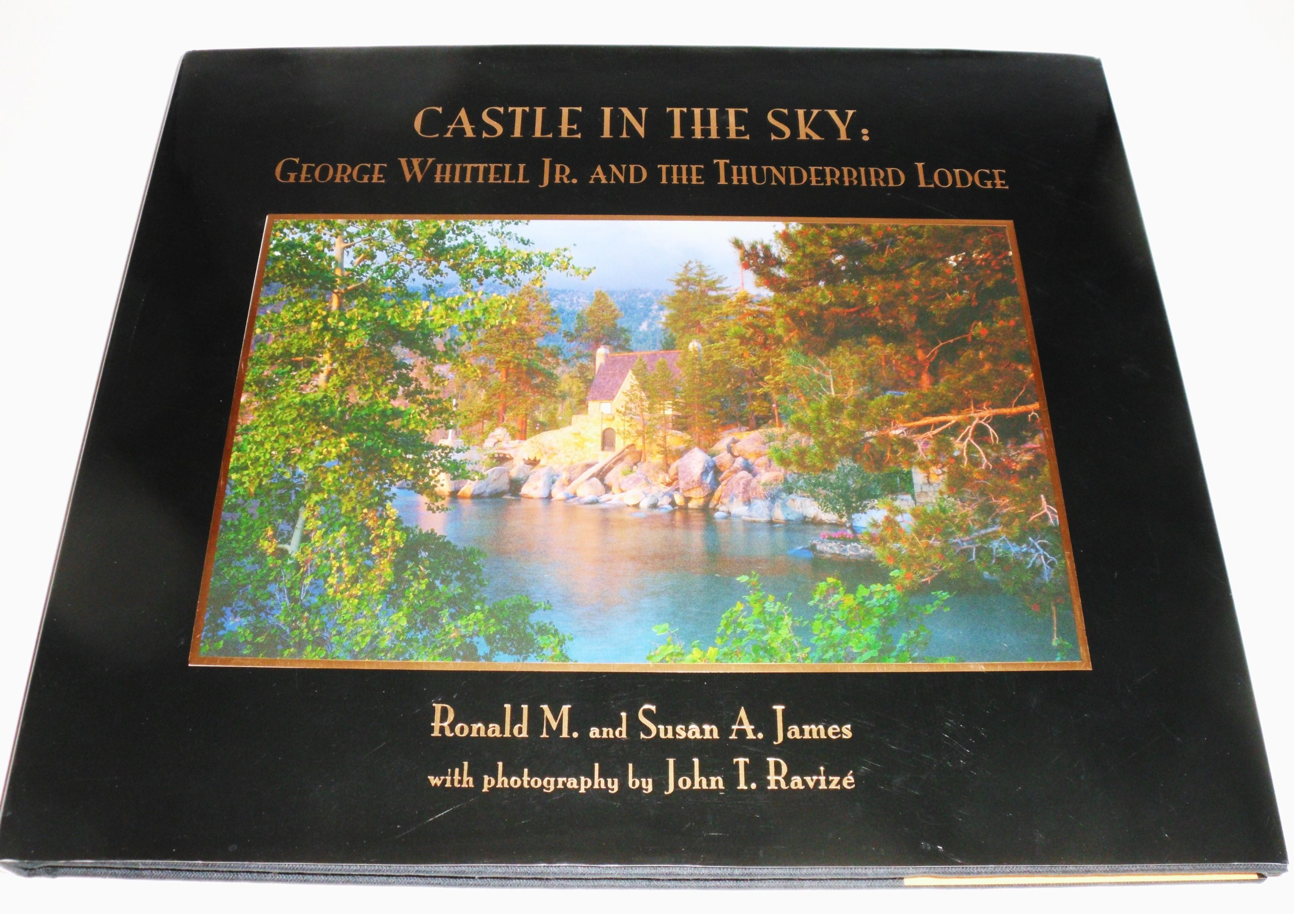 Castle in the sky: George Whittell Jr. and the Thunderbird Lodge PDF ePub book