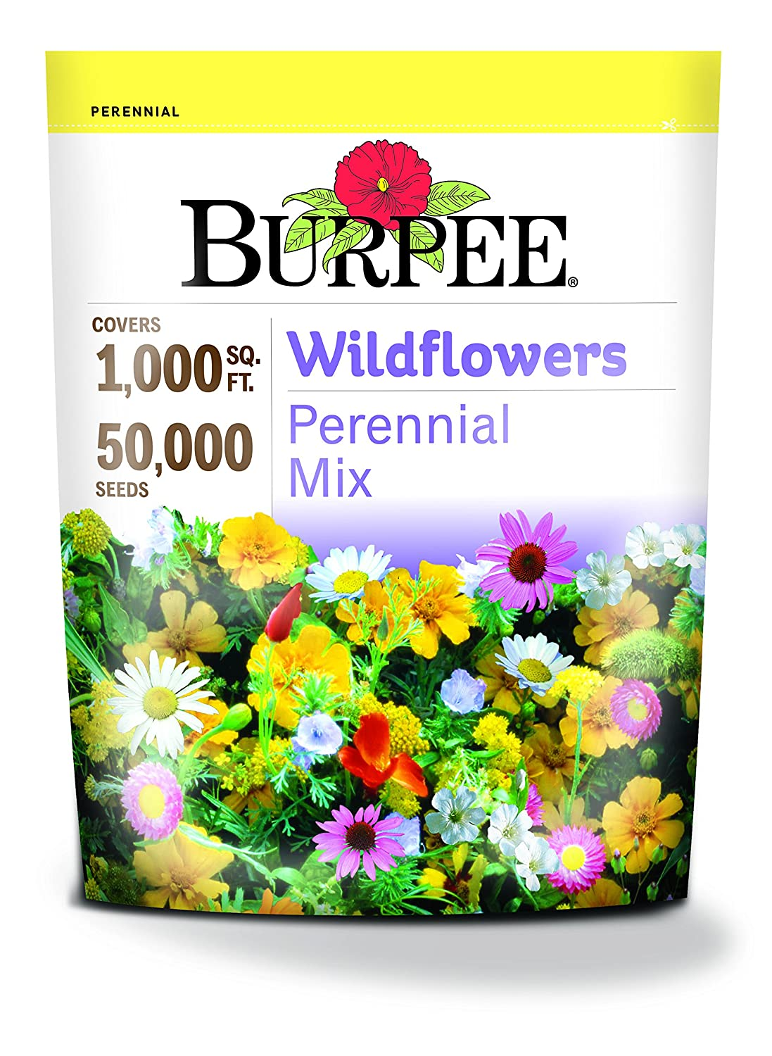 Amazon Burpee Perennial Wildflower Seed Mix Garden Outdoor