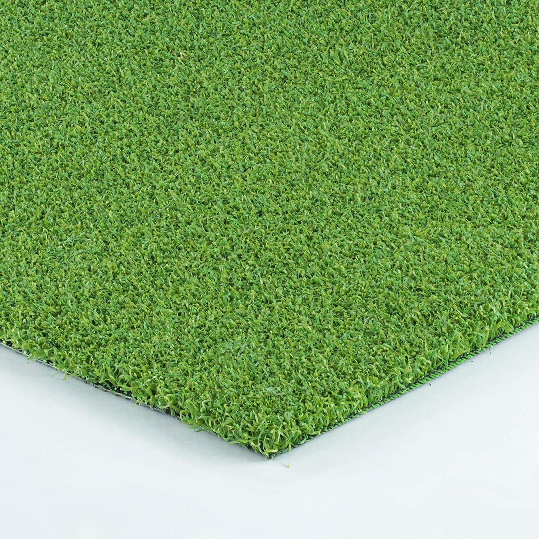 Allgreen PacificプロフェッショナルポータブルゴルフPuttingグリーンインドア/アウトドアトレーニングマット 3' x 5'  B01DQ5ZAM8