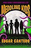 Meddling Kids: A Novel (Blyton Summer Detective Club Adventure)