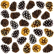 """30 Large 4"""" Pine Cones Thanksgiving Home Decoration Set. Use it with Harvest Pumpkins Gourds Pinecones and Leaves to Decorate and make your own Holiday Wreath and Centerpiece Fall Autumn Wedding Décor"""