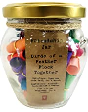 Little Jar of Big Ideas - Friendship Jar - Birds of a Feather Flock Together - Thoughtful Gift - Unique Present - Artisan Handcrafted Gift