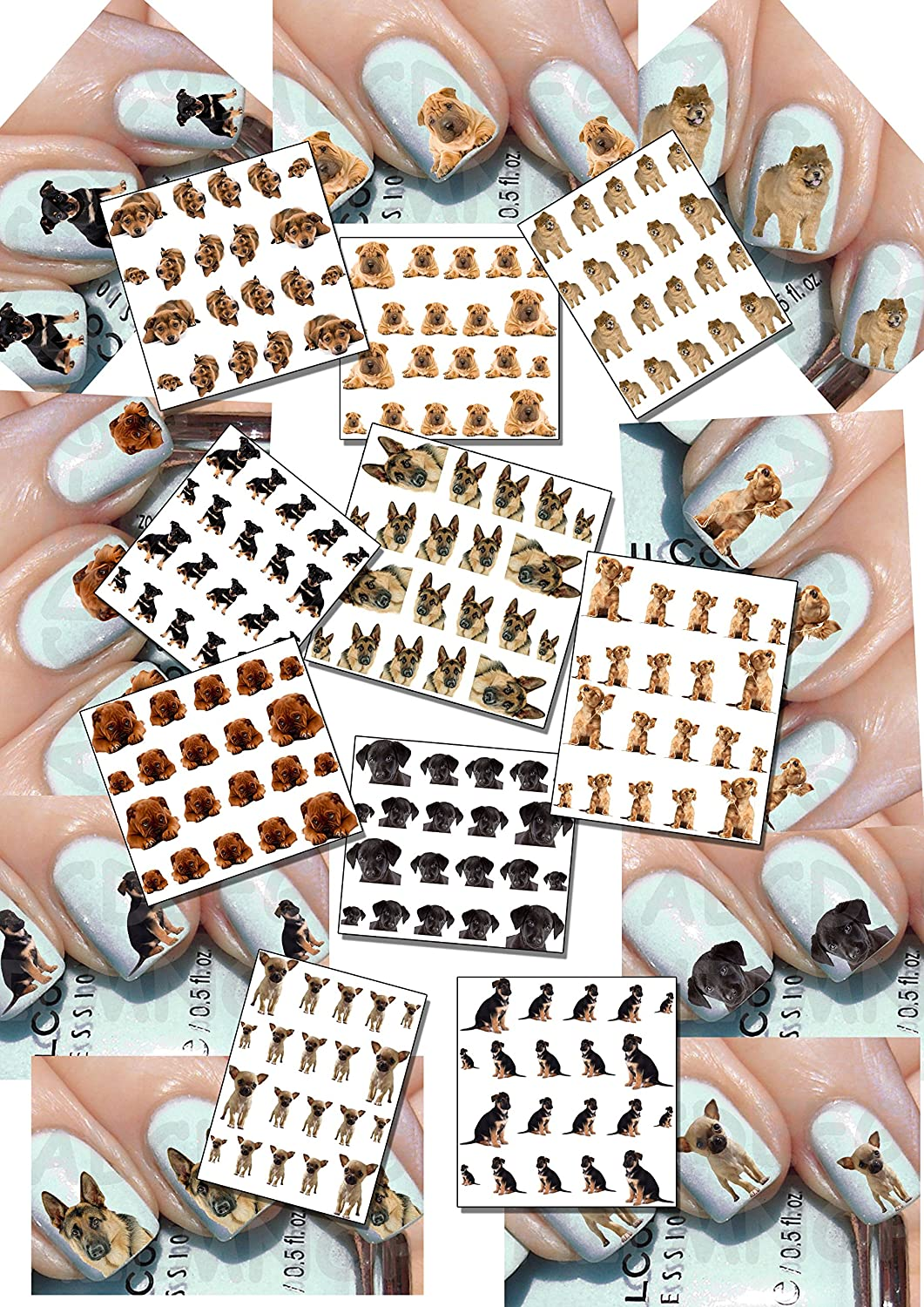 AWS Stock 10 feuillets Water Decal Chiens Chien pour totales 200 Decals. Dix boîtes différentes comme de photos Bulldog Chiwawa Berger Allemand Chow Chow Sharpei Labrador Pincher Dog Nail Art Stickers pour ongles stickers Transfer Tattoo Stickers