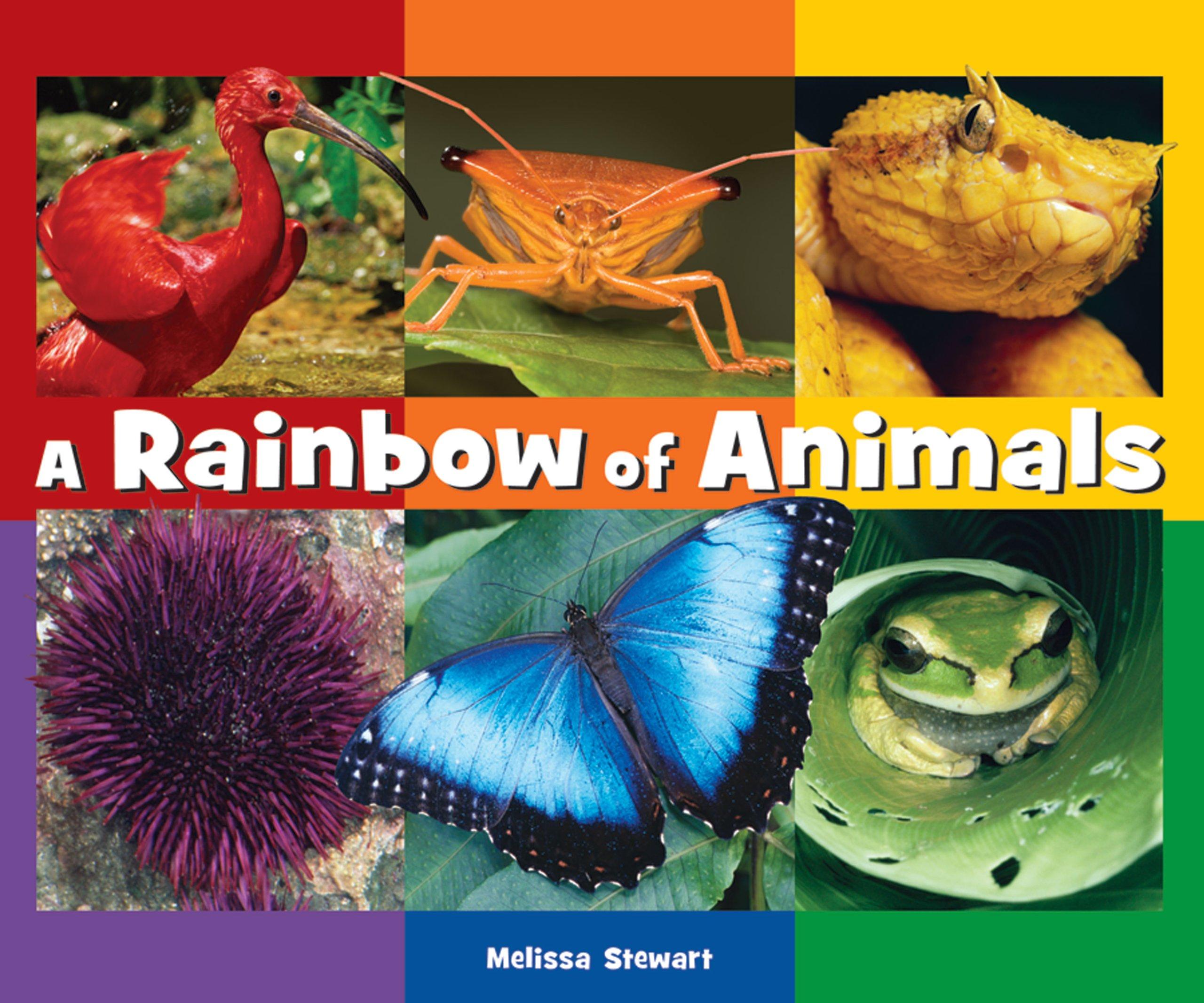 A Rainbow of Animals ebook