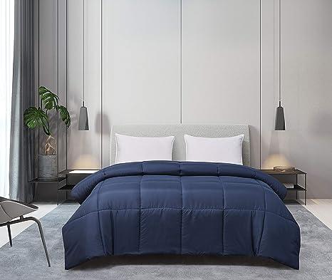 Twin Blue Ridge Home Fashions Microfiber Down Alternative All Season Comforter-Hypoallergenic Polyester Fill White