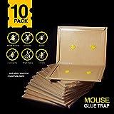 Aspectek Mouse trap, Mouse Glue Boards, Mouse Glue Traps, Mouse Size Glue Traps Sticky Boards by (10 Pack)