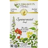 Celebration Herbals Spearmint Leaf Tea Organic 24 Tea Bag, 31Gm
