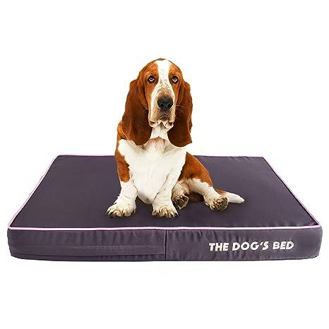 The Dogs Balls La Cama del Perro. Pasa el ratón por encima de ...