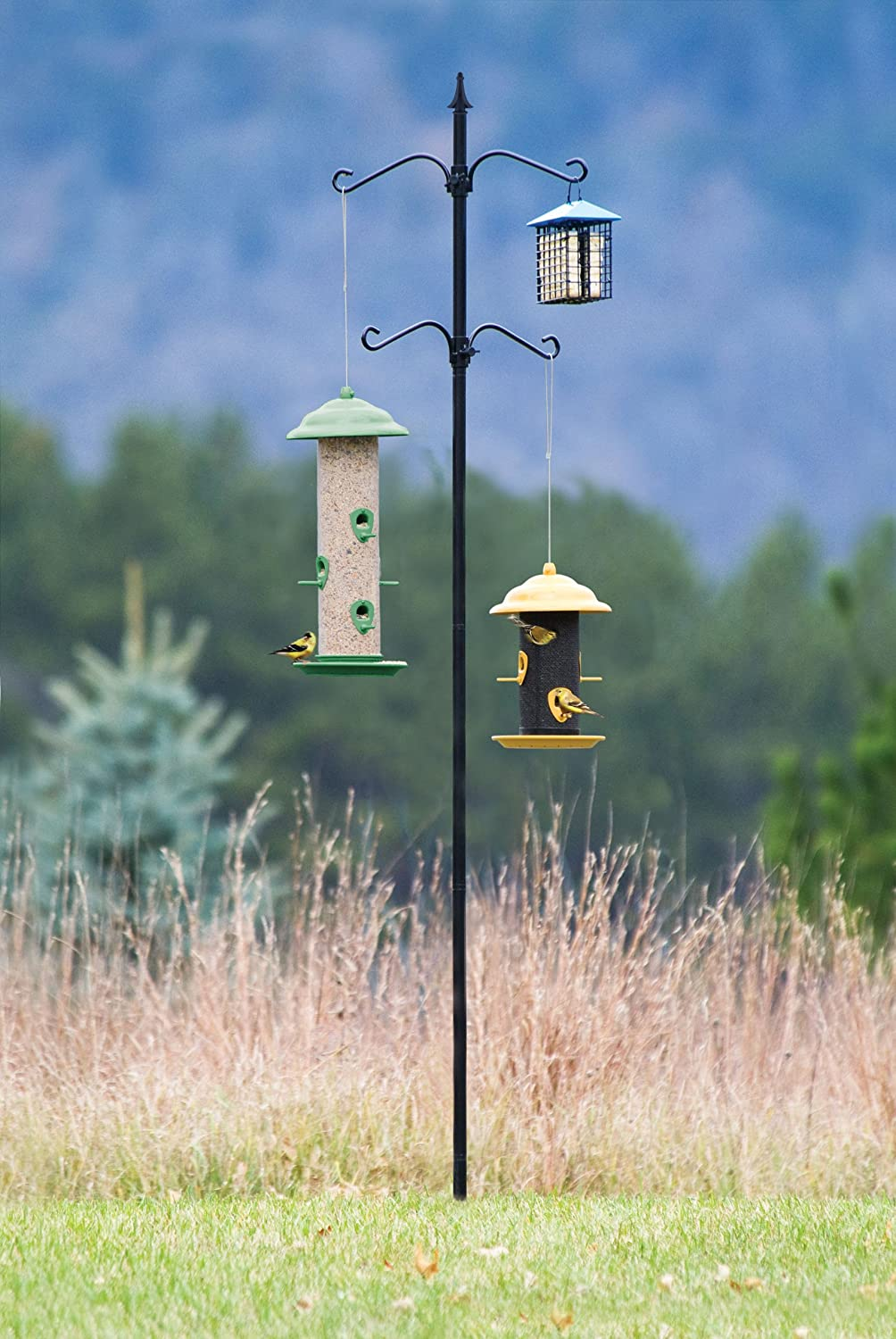 Belle Fleur Bird Feeder Station