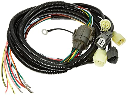 amazon com hasport egcx gsr wiring sub harness for vtec engine rh amazon com gsr wiring harness diagram obd1 gsr wiring harness diagram