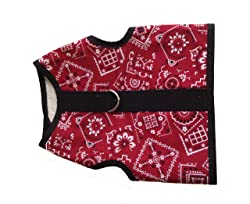 The Kitty Holster Cat Harness