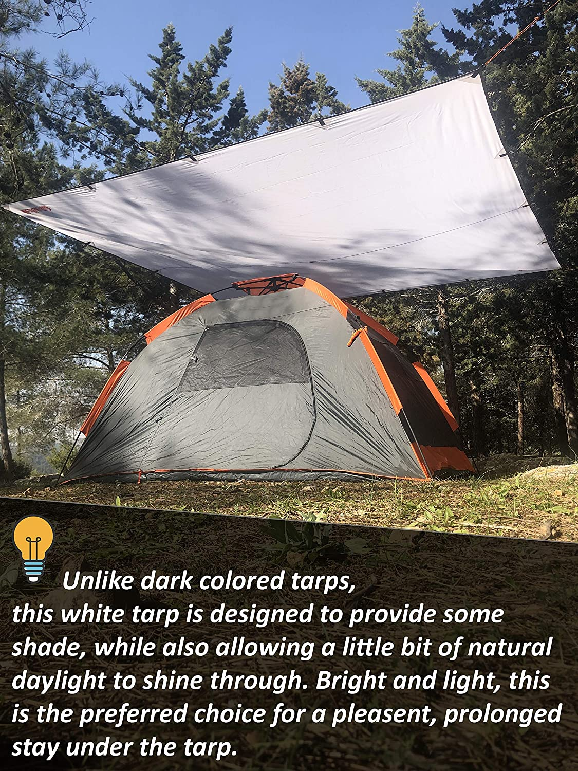 Waterproof Lightweight Survival Gear Shelter for Camping and Outdoor Living 9.8 x 9.3 Tarp Tent Backpacking WildVenture Tent Tarp Rain Fly