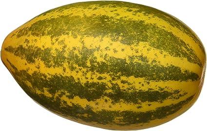 Fresh Cucumber, Madras, 500g Pack