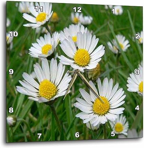 3dRose DPP_3136_3 Daisy Wall Clock, 15 by 15-Inch