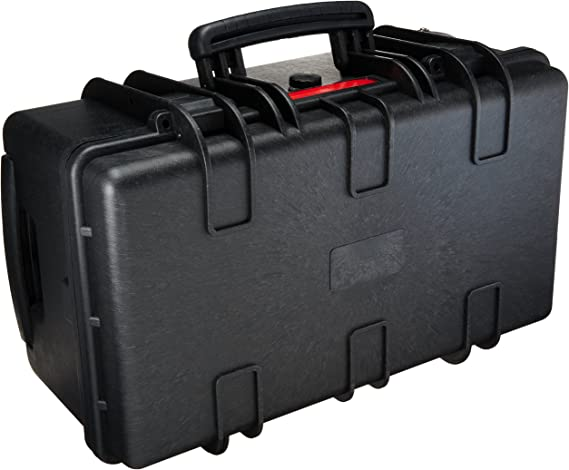 AmazonBasics Large Hard Rolling Camera Case - 22 x 14 x 9 Inches