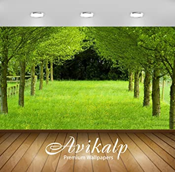 Avikalp Awi3346 Nature Greenery Beautiful Scenery Full HD 3D