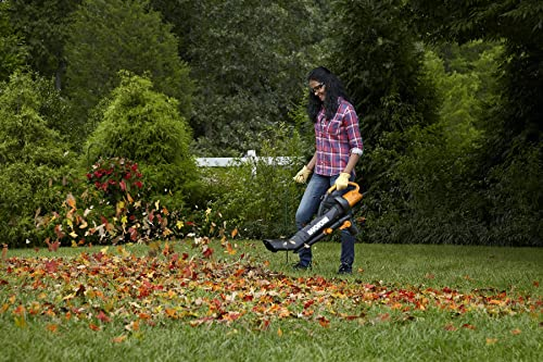 How to Pick the Best Leaf Vacuum Mulcher