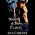 Knights of Stone: Mason: (a Scottish gargoyle shifter and witch romance) (Highland Gargoyles Book 1)