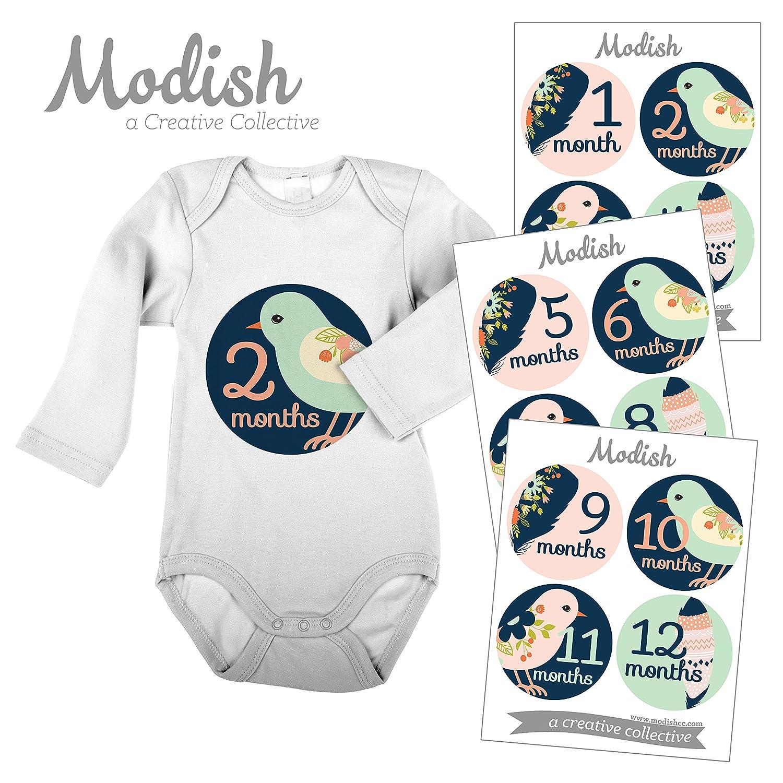 ー品販売  12 Monthly Baby Stickers, Stickers, Birds, Flowers, Feathers, Girl, Baby by Girl, Belly Stickers, Monthly Onesie Stickers, First Year Stickers Months 1-12, Navy, Blue, Pink, Baby Girl by Modish - Creative Collective B00XGZPOZC, amer bijoux アメール ビジュー:856bc6b2 --- mvd.ee