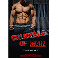 CRUCIBLE OF CAIN (Possessive Collection Book 2) (English Edition)