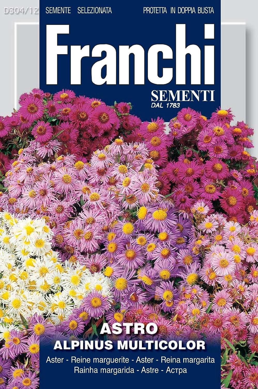 Franchi Samen Alpen-Aster Seeds of Italy Ltd