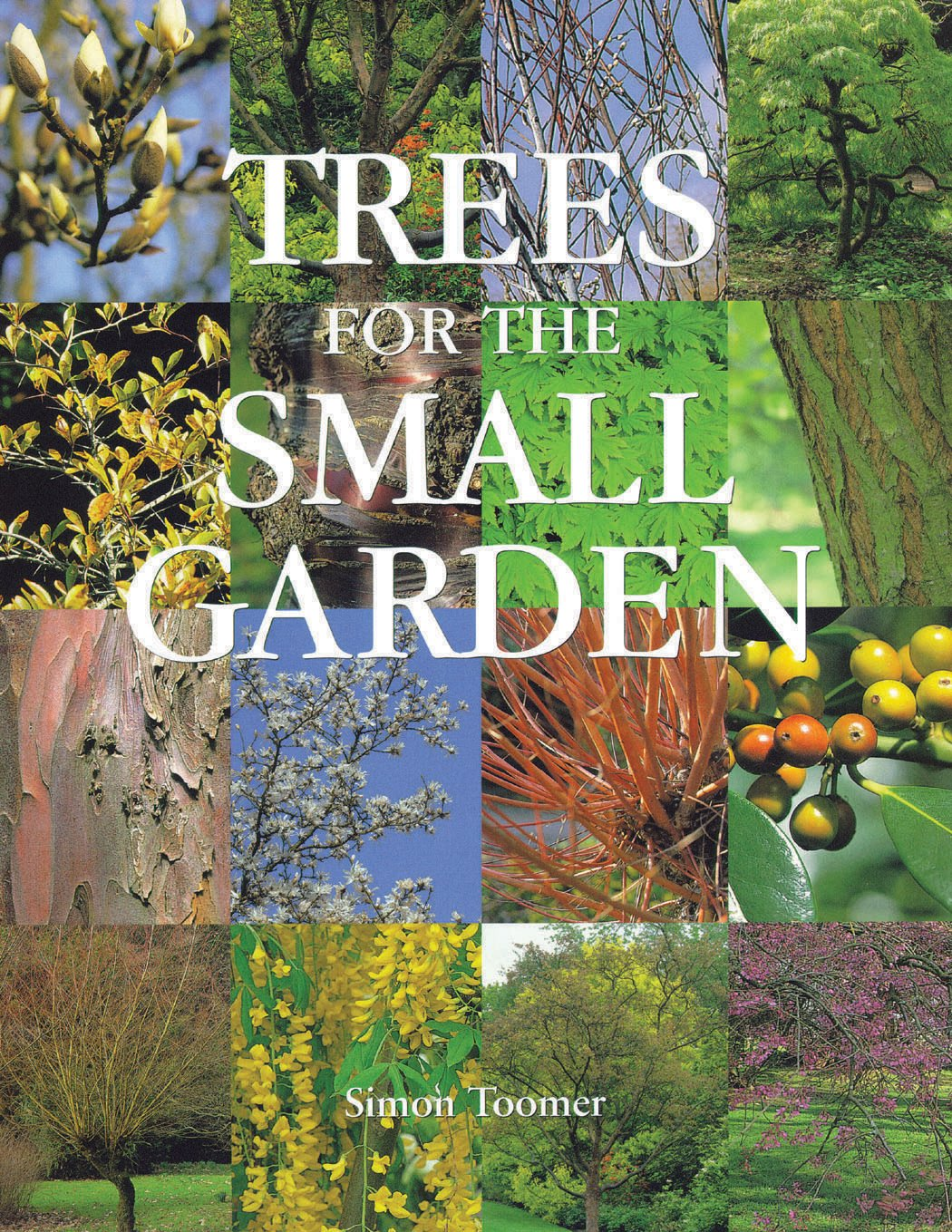 Trees For The Small Garden Simon Toomer 9780881926835 Amazon