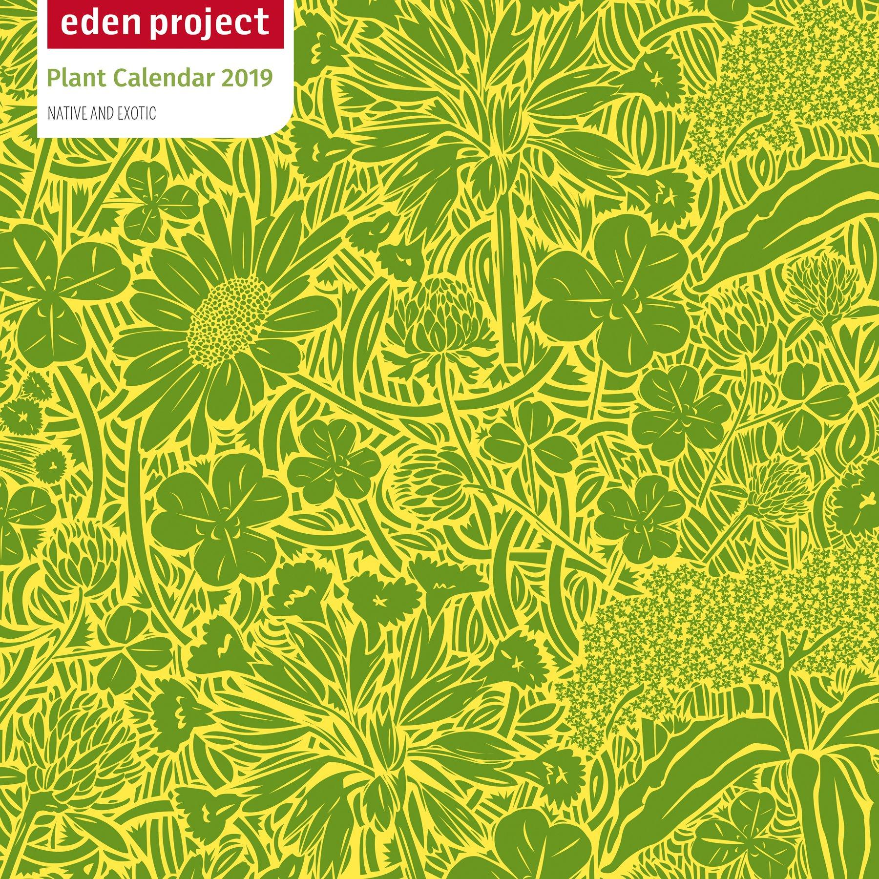 Eden Project Wall Calendar 2019 Art Calendar Flame Tree