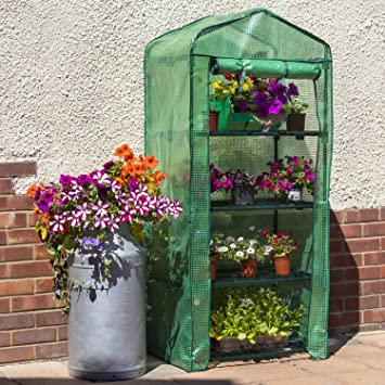 Incredible Woodside 4 Tier Garden Greenhouse Growhouse With Reinforced Cover Home Interior And Landscaping Ologienasavecom