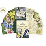 Bach Flower Divination Cards. A Pack of 38 Beautifully Illustrated Cards with Inspirational Proverbs, Quotes and Positive Affirmations. The Perfect Gift for Lovers of the Bach Remedies!