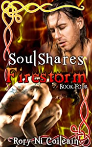 Firestorm: Book Four of the SoulShares Series