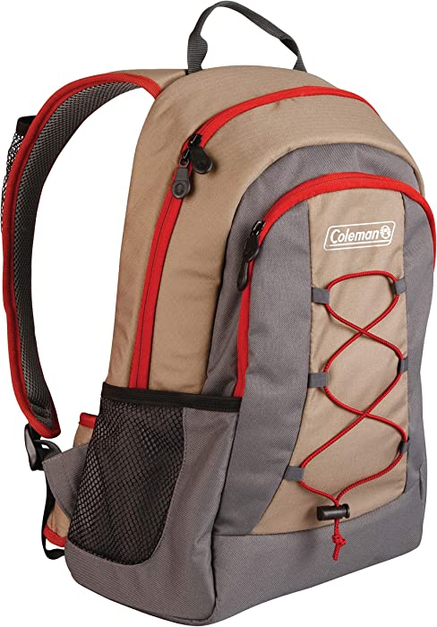 Top 8 Laptop Backpack Coleman