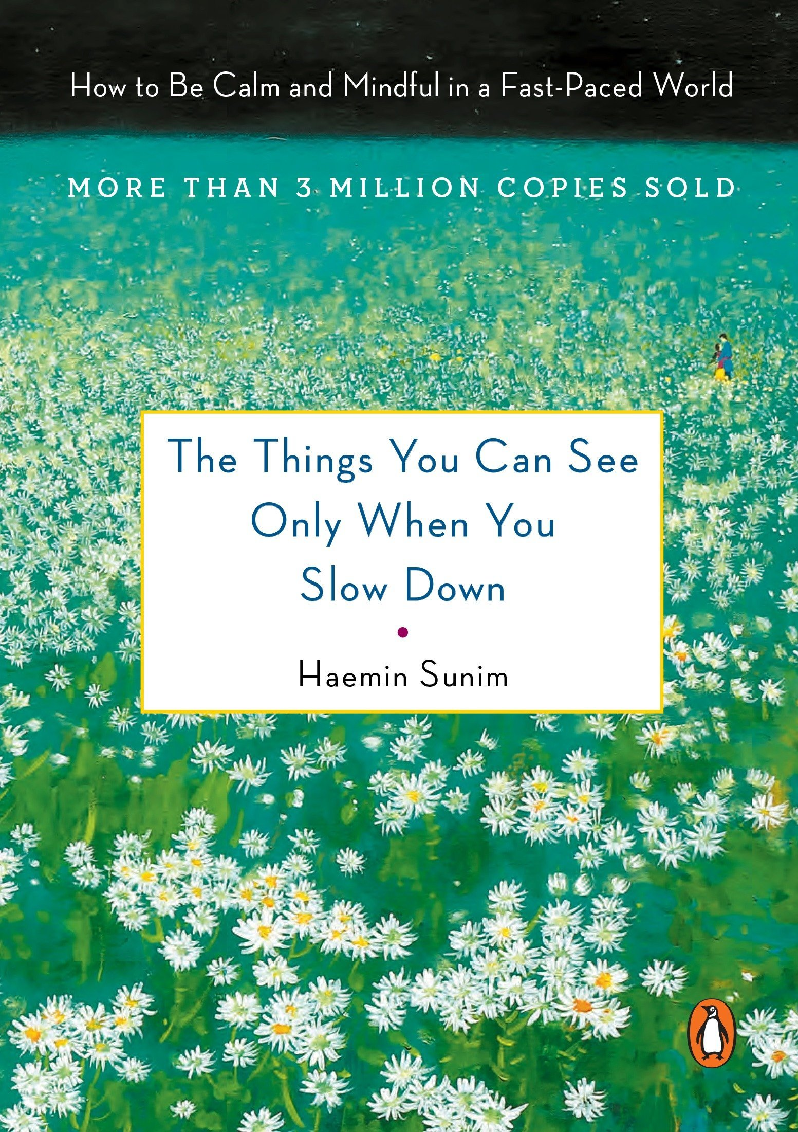 The Things You Can See Only When You Slow Down: How to Be Calm and Mindful in a Fast-Paced World por Haemin Sunim