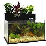 Fin to Flower Aquaponic Aquarium Midsize System B