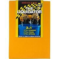 Mr Clean 828878601 The Liquidator