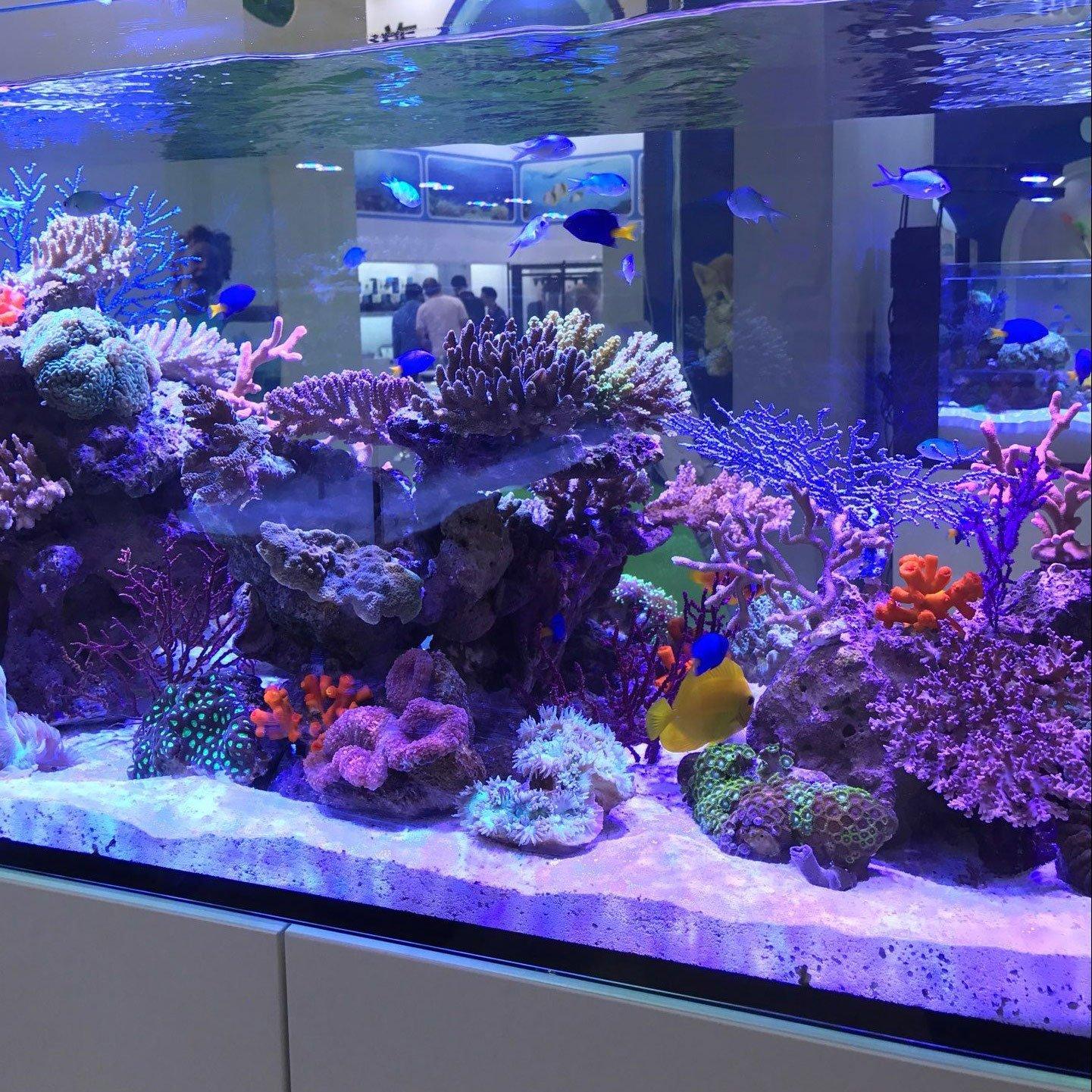 Acuarios Eco Luz de día Simulación iluminación LED Acuario Azul Blanco Rojo Completo Spectrum LED Reef Coral Fish Aquarium Luz Agua Plantas ...