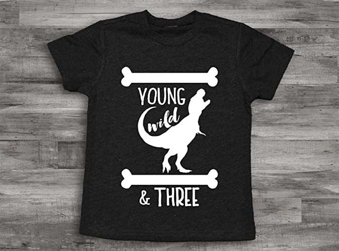 Amazon Dinosaur Young Wild And Three Birthday Boy Shirt 3rd Bday ShirtThird Shirt3rd