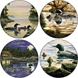 CoasterStone AS8160 Absorbent Coasters, 4-1/4-Inch, Loons, Set of 4