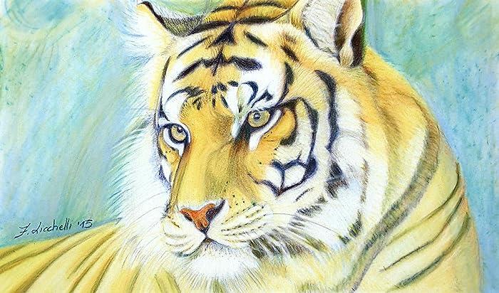Ritratto Tigre Disegno Originale Illustrazione Pezzo Unico