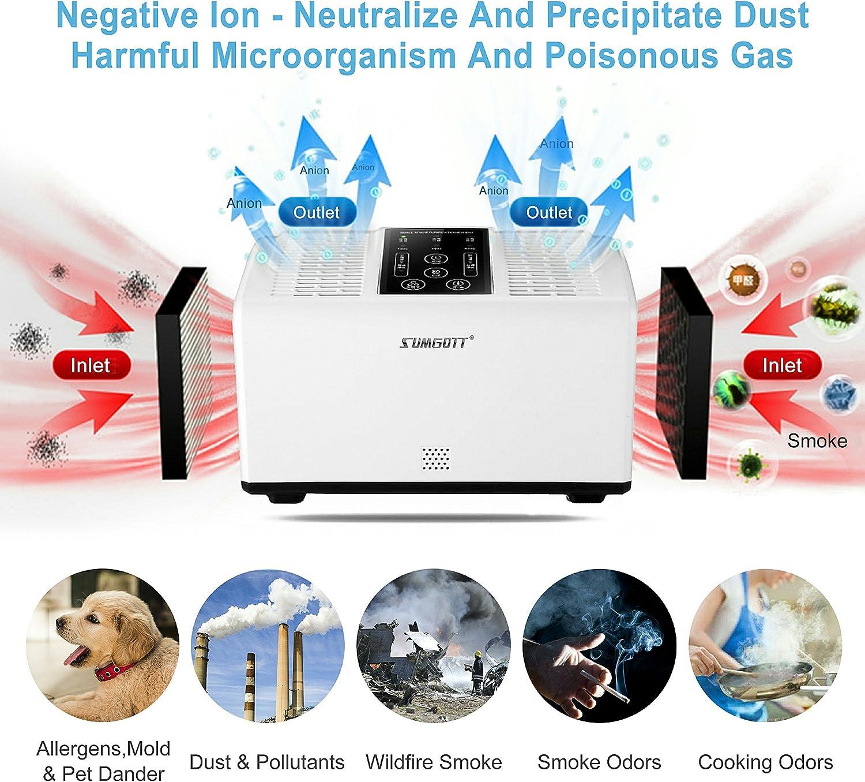 sumgott Purificador de Aire de Filtro HEPA Ionizador de Aire para ...