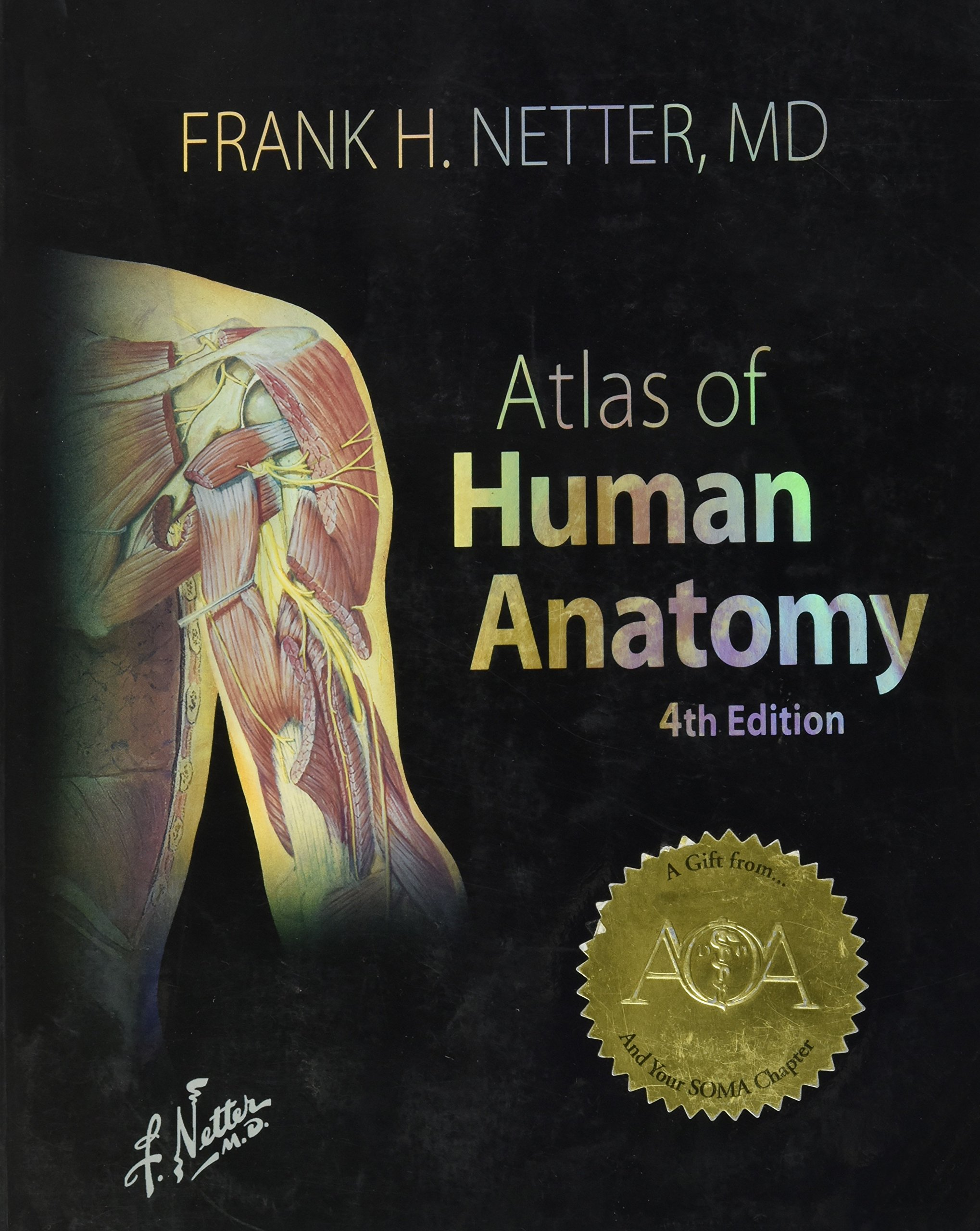 Atlas Of Human Anatomy 4th International Edition Frank H Netter