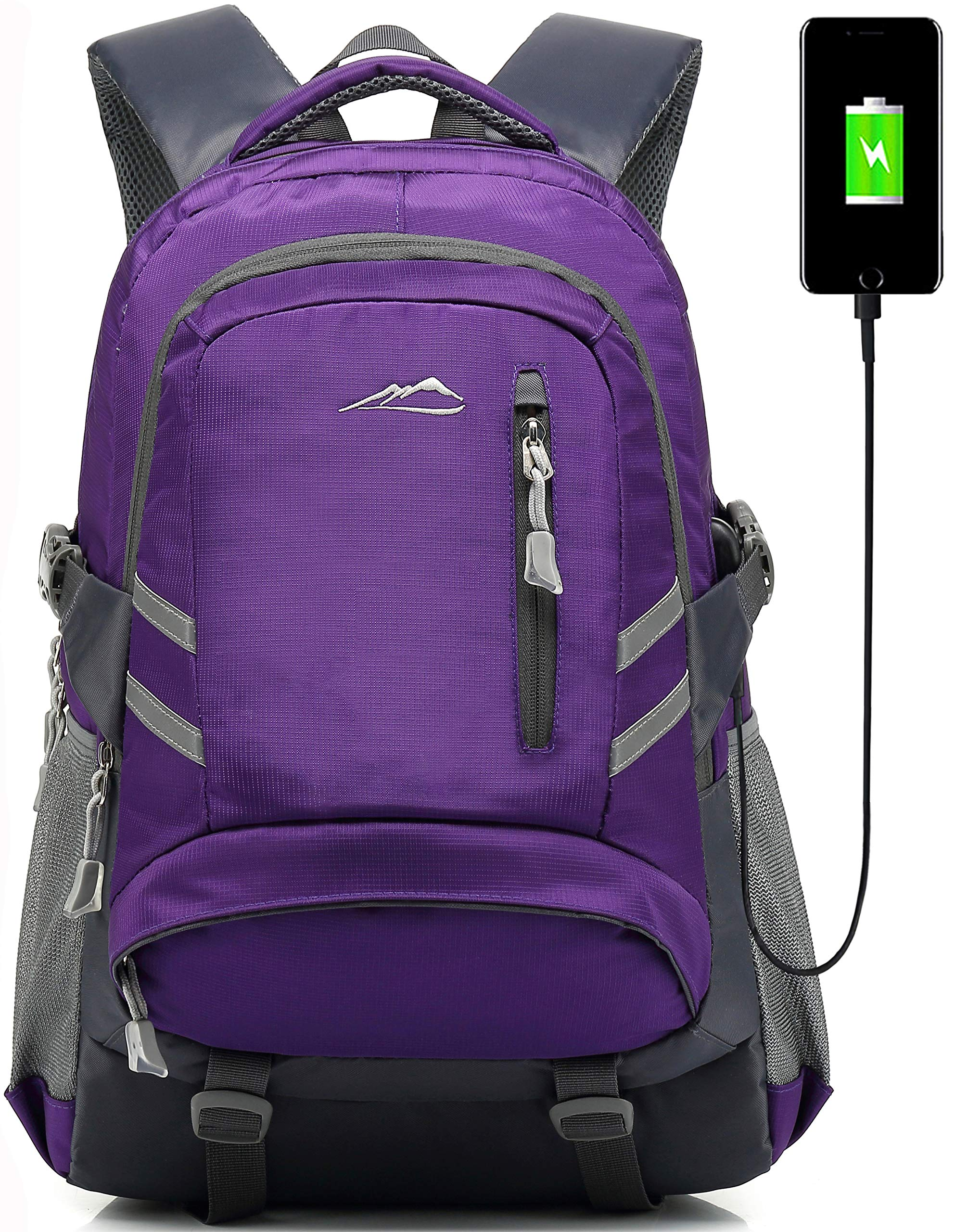 Backpack Bookbag for School College Student Sturdy Travel Business Laptop Compartment with USB Charging Port Luggage Chest Straps Night Light Reflective (Purple) by ProEtrade