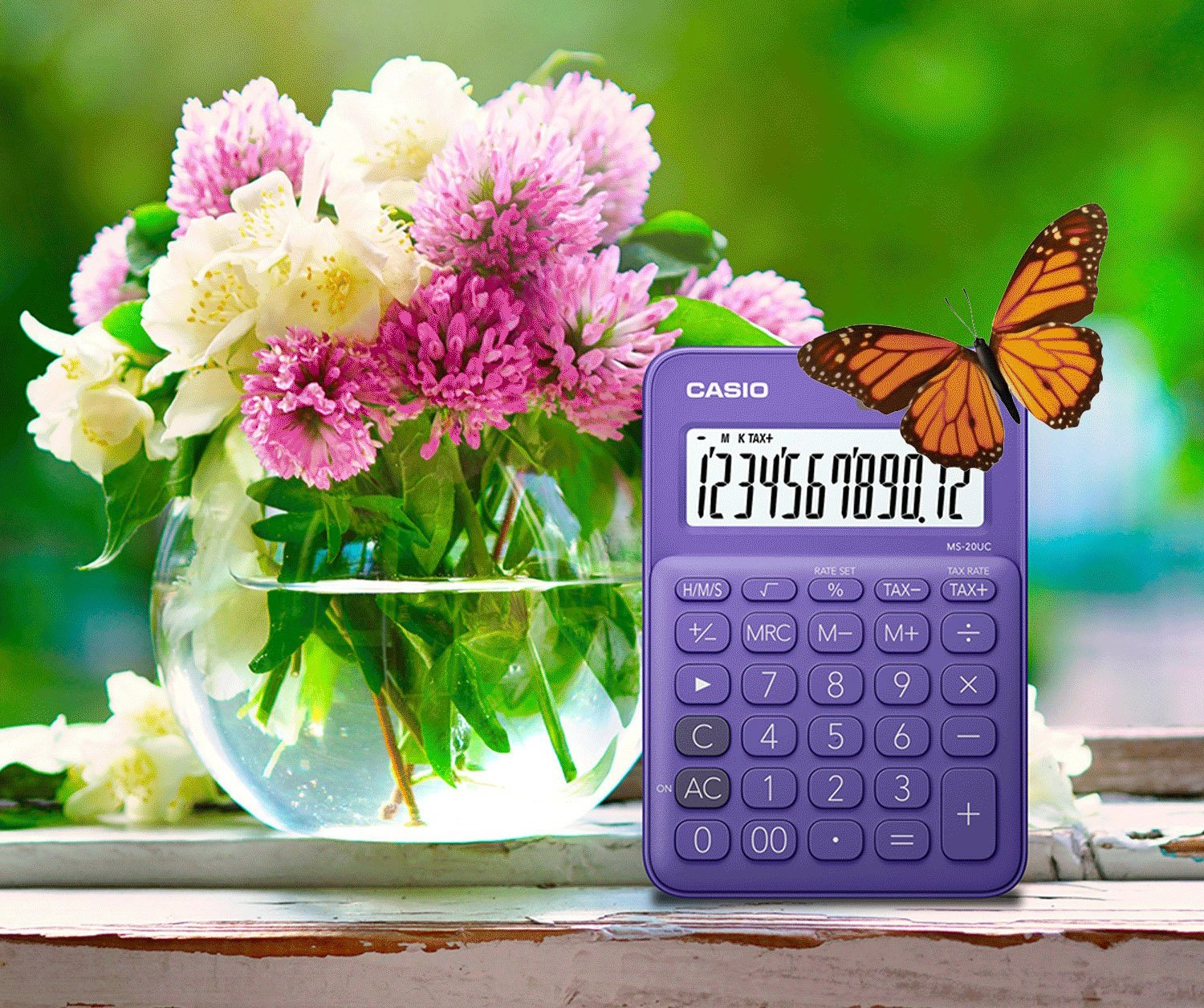 Casio Ms 20uc Pl Calculator 12 Digit Lcd Display With Rake Command Colorful Sl 310uc Orange Stylish Colour Purple Office Products