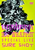 SPECIAL LIVE DVD 「BRAHMAN / EGO-WRAPPIN' SPECIAL LIVE SURE SHOT 」