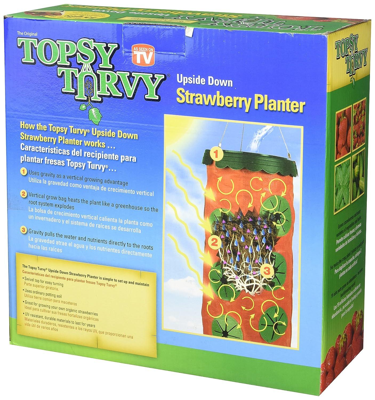 - Amazon.com: Strawberry Round Planter: Patio, Lawn & Garden