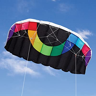 Into The Wind Hot Dog Stunt Kite: Toys & Games