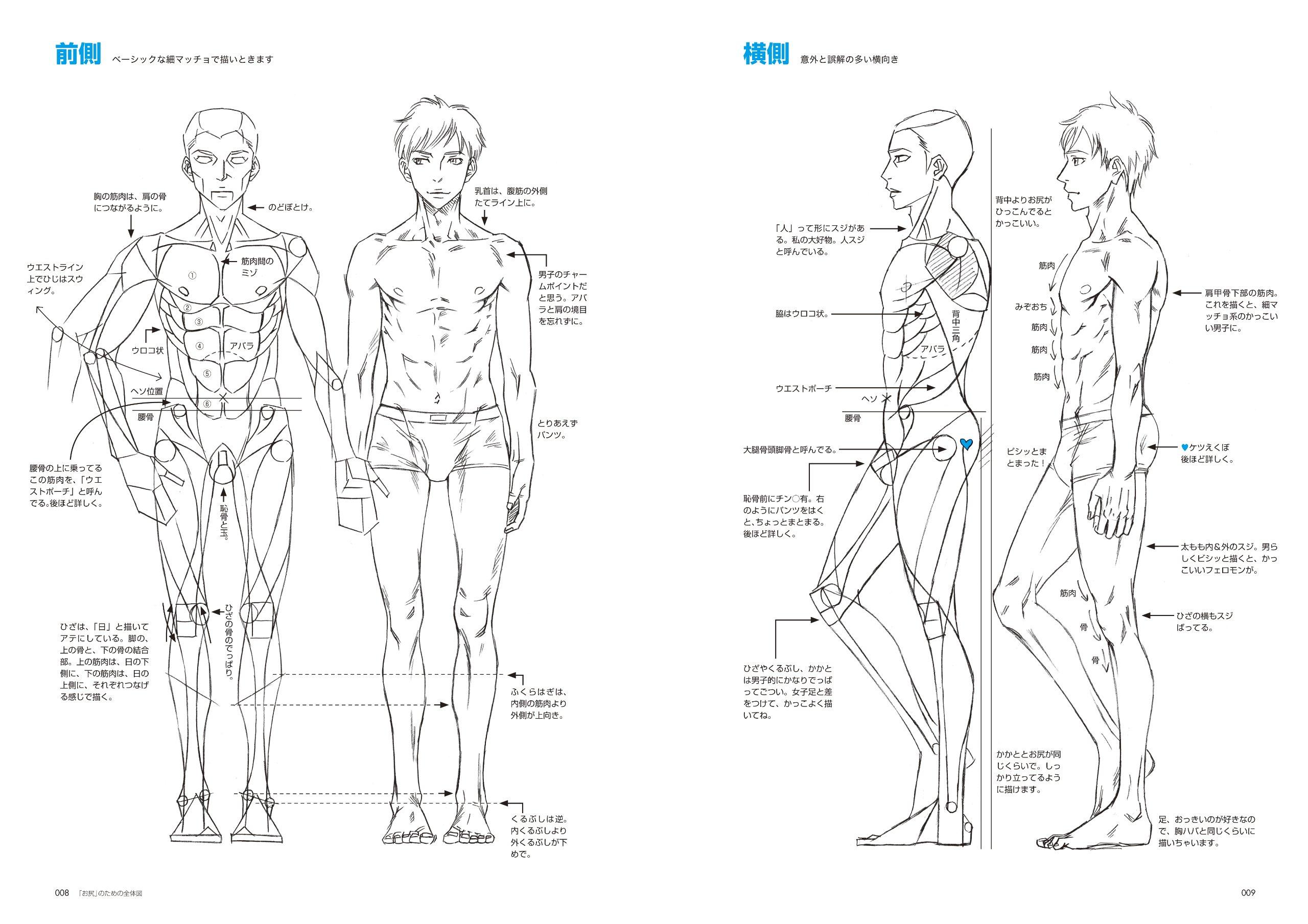 Drawing Mens Hips Japan Import Chikarainu 9784403650673 Amazon