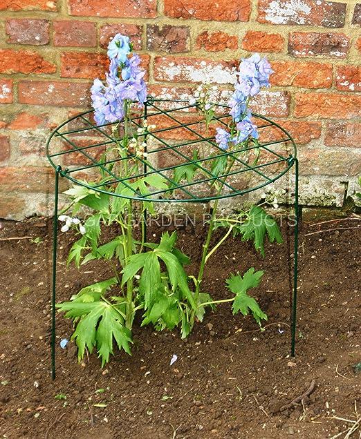 GAP Garden Products - Soporte con forma de anillo y tres patas ...