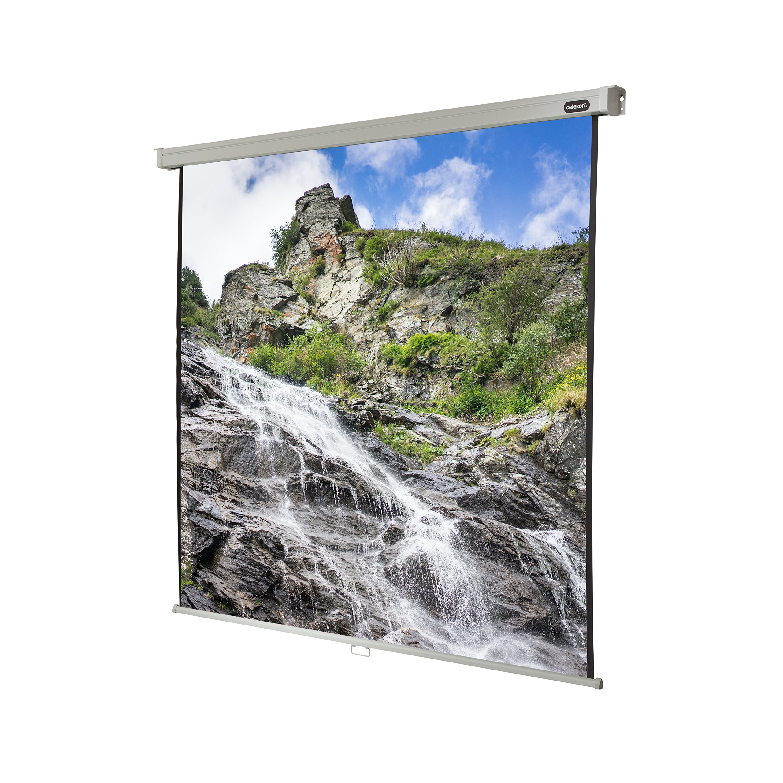 "celexon 122"" Manual Pull Down Projector Screen Manual Professional, 85 x 85 inches viewing area, 1:1 format, Gain factor of 1.2 by Celexon (Image #1)"